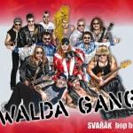 Walda Gang - sponzor