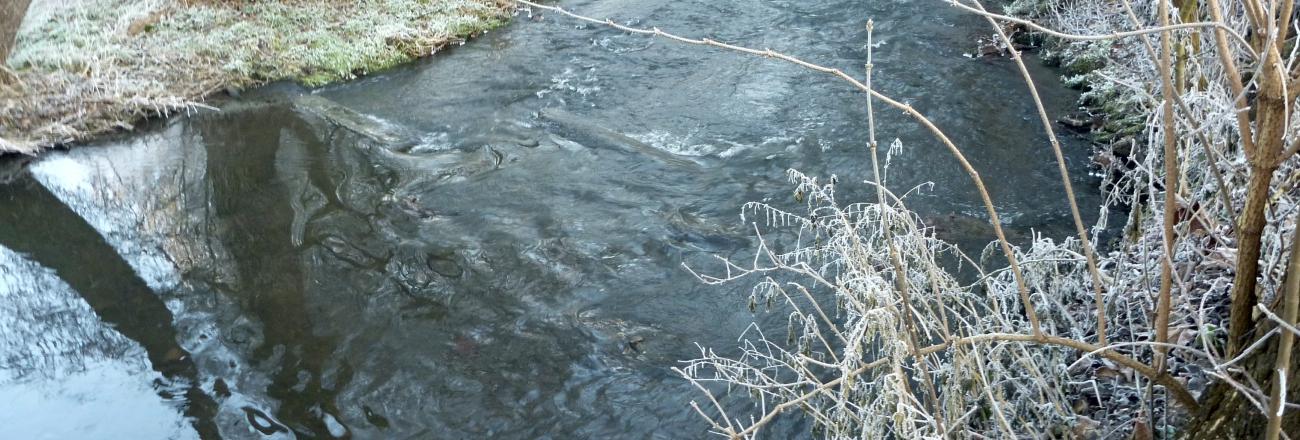 Zpráva od vody – první letošní z 1.ledna