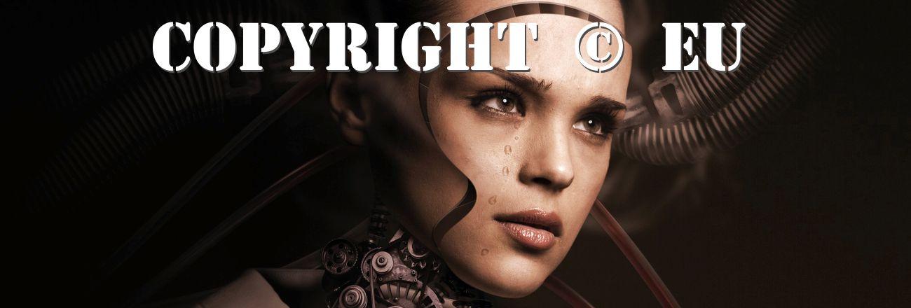 Reforma Copyrightu a článek 13